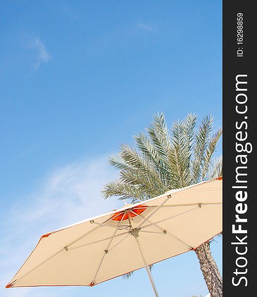Beach Umbrella, palm and Sky