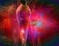 Free Seasonal Red Stock Image - 1630511