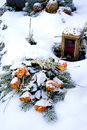 Free Snowy Rose Bouquet Stock Photography - 1633622