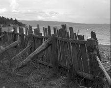 Free Coastline Fence,B&W Stock Image - 1630781
