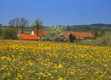 Free Spring Landscape Stock Photography - 1633982
