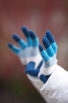 Winter Hands Royalty Free Stock Image