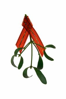 Mistletoe Twig With A Red Ribbon Royalty Free Stock Images