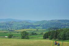 Free Grass Cutting Stock Image - 1637421