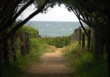 Free Footpath To Ocean Stock Photography - 1637642