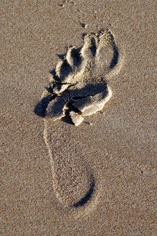 Free Footprint Stock Images - 1639754