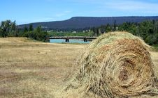 Roll Of Hay Royalty Free Stock Images