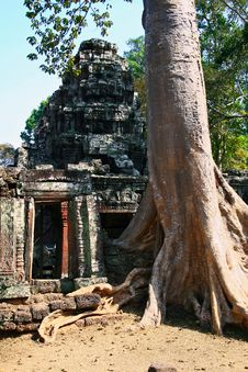 Free Ta Prohm Temple,Angkor Royalty Free Stock Photography - 16301817