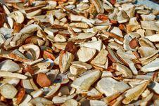 Free Detail Of Drying Autumn Mushroom Stock Photos - 16303363