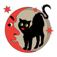 Cat And Moon Stock Photos