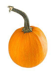 Free Pumpkin Royalty Free Stock Image - 16304276