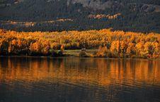 Free Autumn Cottage Stock Images - 16307674