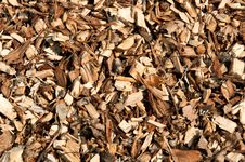Free A Lot Of Wood Chips Royalty Free Stock Photos - 16308278