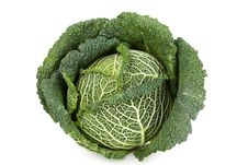 Free Savoy Cabbage Royalty Free Stock Photography - 16310987