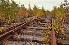 Free Abandoned Tracks Stock Photography - 16314712