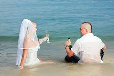 Free Tropical Wedding Stock Image - 16316031