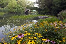 Free Central Park At The Pond Stock Photo - 16316400