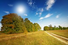 Free Wonderful  Large Oak Trees And Sky By Autumn. Stock Photos - 16316663