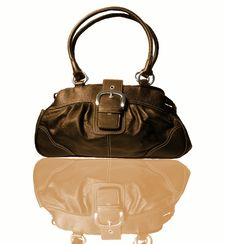 Free Women Handbag Stock Photography - 16317622