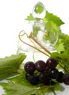 Free Wine Carafe And Young Grape Stock Image - 16317661