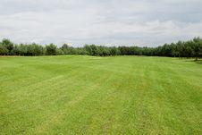 Free Golf Field Stock Photos - 16319073