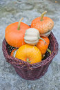 Free Basket Of Decorative Pumpkins (Cucurbita Pepo) Royalty Free Stock Image - 16326086