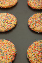 Free Closeup Of Sugar Cookies On Sheet Stock Photos - 16327553