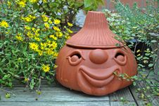 Free Terracotta Head With Plants Still Life Stock Photography - 16320492