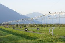 Free Sprinkler Irrigation System Stock Images - 16321974