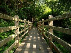 Dappled Sunlight On Foot Bridge Stock Photo