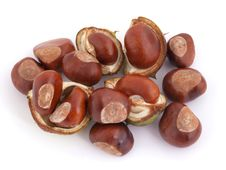Free Horse Chestnut, Conker. Stock Photos - 16322683