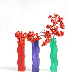 Free Still Life With Red Natural Rowan Royalty Free Stock Photos - 16323588