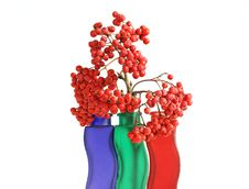 Free Still Life With Red Natural Rowan Royalty Free Stock Photography - 16323627