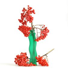 Free Still Life With Red Natural Rowan Royalty Free Stock Photo - 16323635