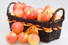 Free Basket With Apples Stock Photo - 16325130