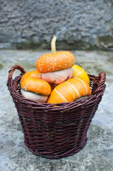 Free Basket Of Decorative Pumpkins (Cucurbita Pepo) Royalty Free Stock Photo - 16326075