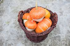 Free Basket Full Of Orange Decorative Pumpkin Stock Image - 16326081