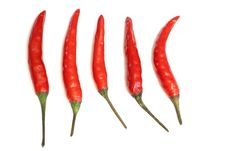 Free Hot Chili Peppers Stock Photos - 16328023