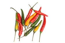 Free Hot Chili Peppers Royalty Free Stock Image - 16328086