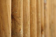 Free Background Of Logs Royalty Free Stock Photos - 16329268