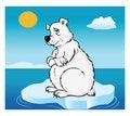 Free Polar Bear Global Warming Stock Photo - 16333730