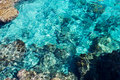 Free Beautiful Clear Sea Water Royalty Free Stock Photos - 16338688