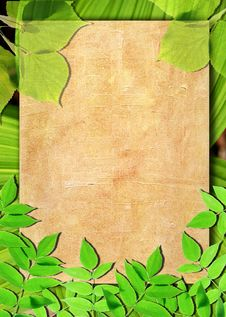 Free Old Paper Background With Green Leaves Stock Photo - 16330460