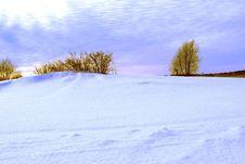 Free Winter Stock Image - 16330961