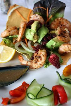 Free Gourmet Salad With Prawns Royalty Free Stock Photo - 16331655