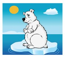 Polar Bear Global Warming Stock Photo