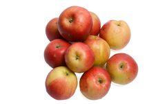 Free Apples Stock Photos - 16335163