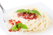 Free Spaghetti Royalty Free Stock Photos - 16338558