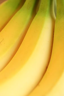 Free Bananas Royalty Free Stock Images - 16339199