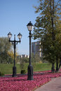 Free Two Lamps In The Autumn Park. Royalty Free Stock Images - 16340659